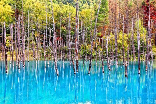 biei-blue-pond-autumn-version