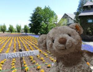 farm-tomita