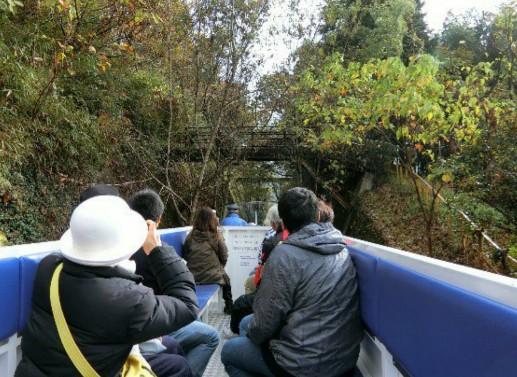 takachiho-amaterasu-rail-way