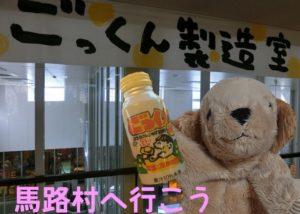 travel-kochi-umaji