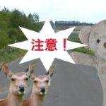point-to-make-note-of-travel-hokkaido