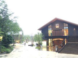 entrace-house-of-metsa-village