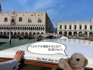 the-water-taxi-in-venetia