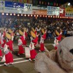 tokushima-naruto-awa-dance